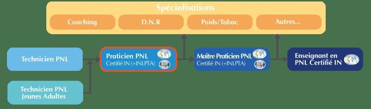 Organigramme Formation Praticien PNL Bordeaux