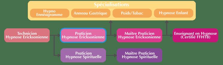 Organigramme Formation Praticien Hypnose Ericksonienne