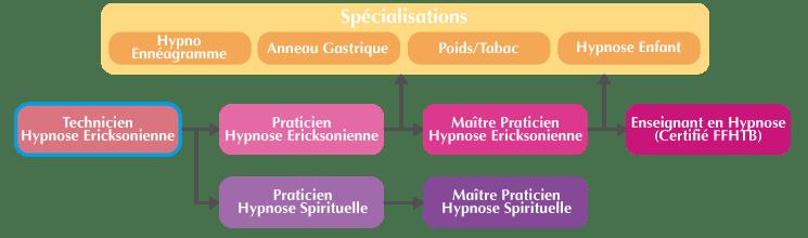 Organigramme Formation Technicien Hypnose Ericksonienne