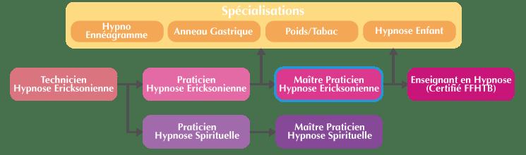 Organigramme Formation Maitre-Praticien Hypnose Ericksonienne