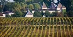 24302-650x330-autre-chateau-carbonnieux-pessac-leognan
