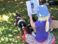 phoebe reading to the pups