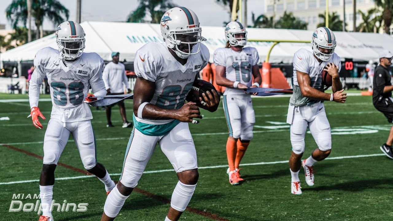 Dolphins' Wide Receiver Position Battles Ahead Of 2021