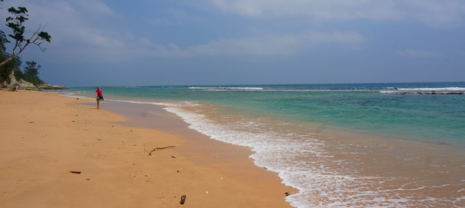 Discovering the Andaman Islands