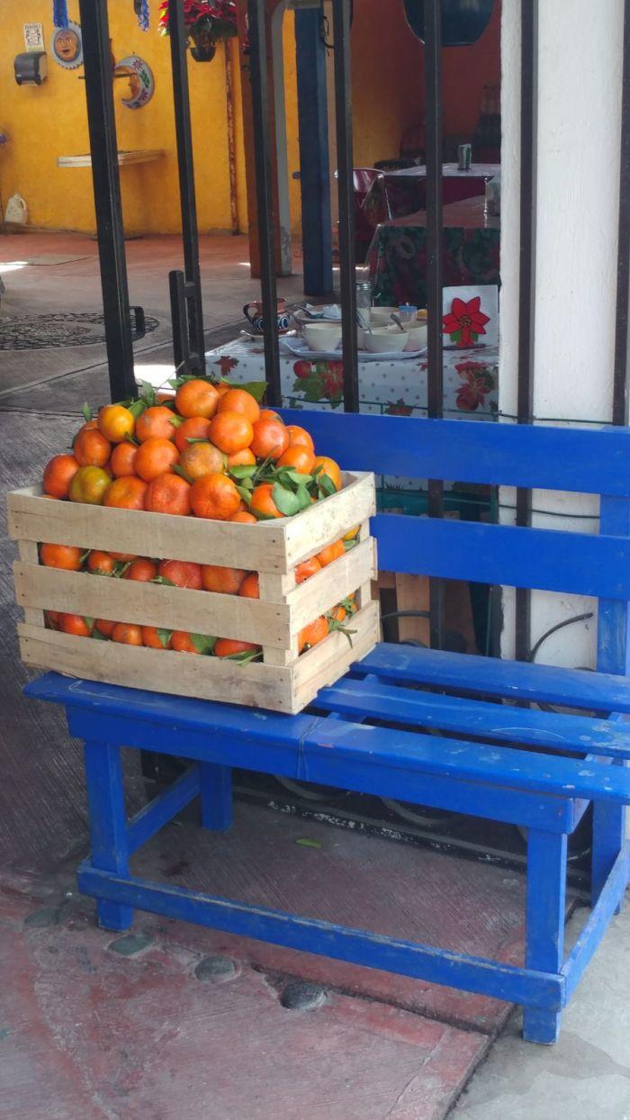 Oranges in Tepoztlan
