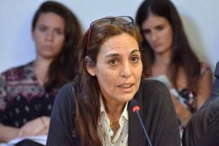La radical Carla Carrizo también presentó una iniciativa para subir de 257 a 300 la cantidad de bancas.
