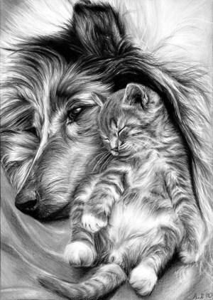pencil realistic drawings animal