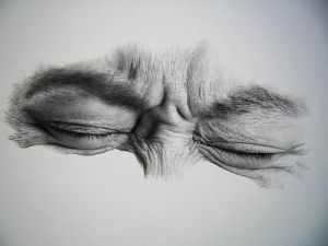 realistic drawings raving start bored