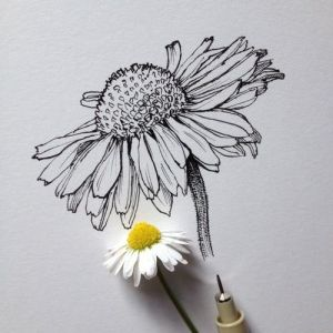drawings ink simple bedazzle bewitching pen flower drawing flowers daisy sketch pencil draw sunflower pretty painting abstract