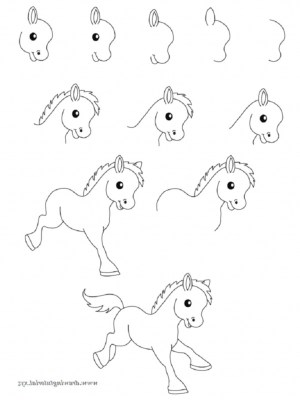 draw easy animals step animal drawing drawings simple steps guide basic shapes