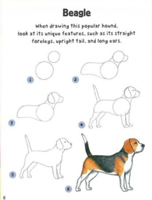 dog drawing simple follow practice drawings breeds hanging