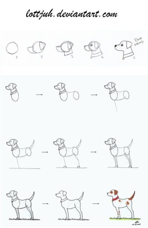 dog drawing simple tutorial step draw face practice follow cartoon drawings animal easy puppy easily sketch deviantart cartoondistrict kawaii sketches