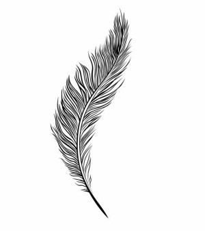 line drawing feather drawings simple tattoo examples sketch easy feathers doodle quill tattoos clipart illustration stencil patterns google morgue explore