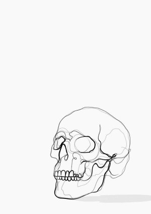 line drawing examples simple drawings skull lines easy basic boredart kisbey feather getdrawings kerry artwork illustration sketches things using violent