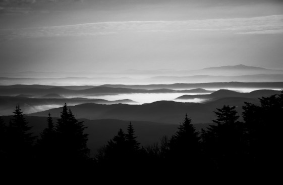 Green Mountain Fog