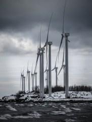 Steel Winds in Winter