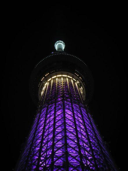 "Tokyo Sky Tree in ""Miyabi"""