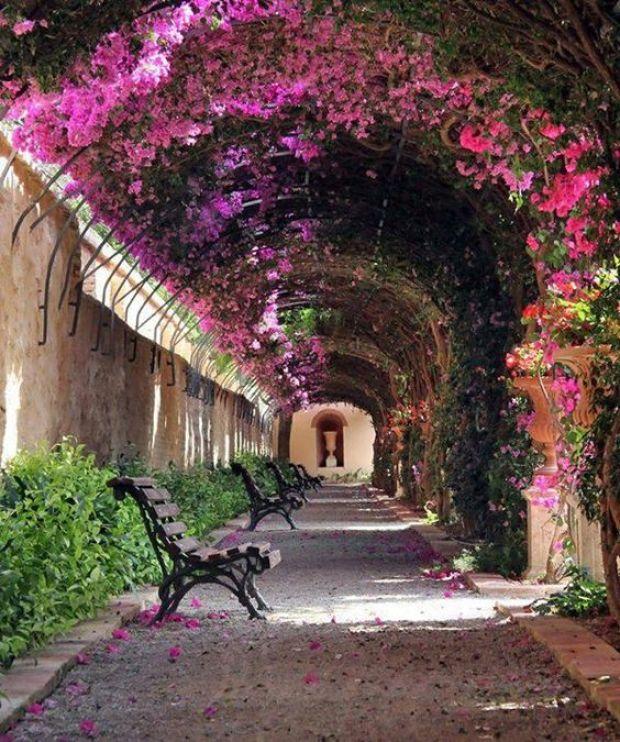 Passage at Jardín de Monforte in Valencia