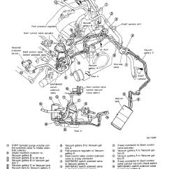 1999 Nissan Altima Speaker Wiring Diagram Stratovolcano With Labels Vacuum Hose 2000 Maxima Photos