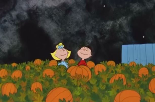 Snoopy Fall Wallpaper Tv Borg Com