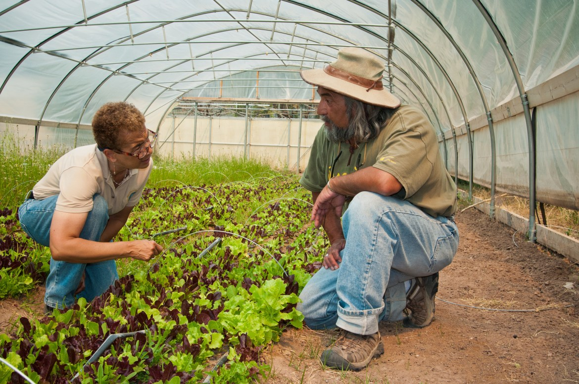 Sustainable Agriculture in Mexico: Exporting Practices Worldwide