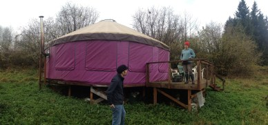 This yurt didn't meet our needs, but inspired our search was clearly very purple.