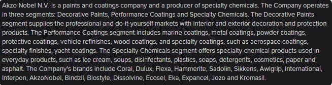 Akzo Nobel descrição das atividades da empresa