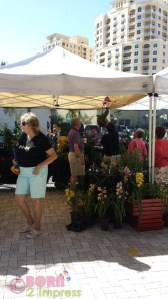 The West Palm Beach green market a great place to take the family on the weekends!