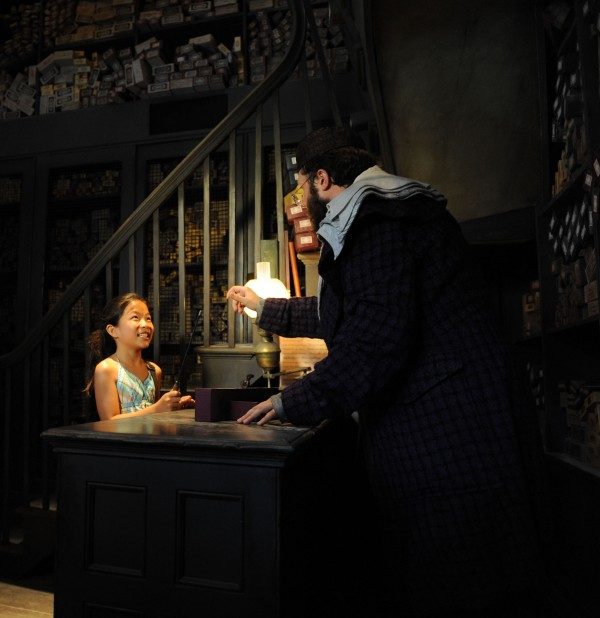 The Wizarding World of Harry Potter Exclusive Vacation Package!