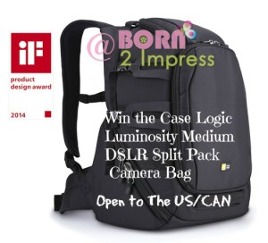 Case Logic Top of The Line Camera Bags- Review and Giveaway