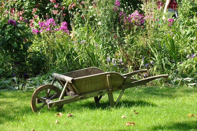 Is It Time To Invest In Your Garden? Let's Get Started