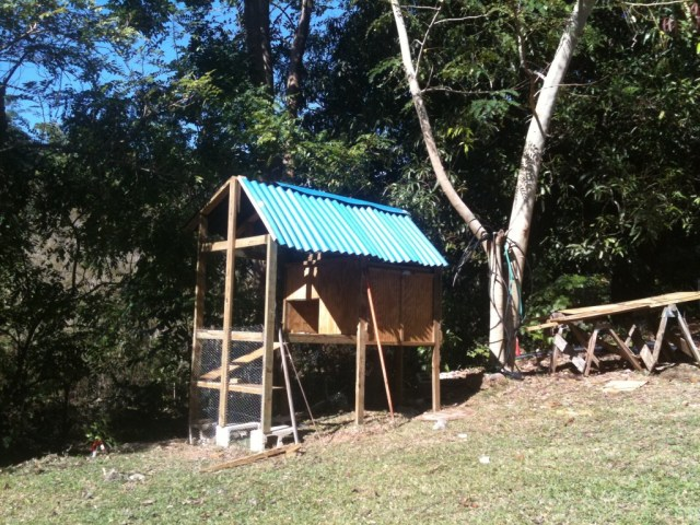Tropical Chicken Coop