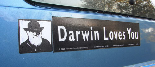 darwin loves you