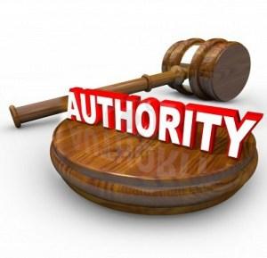 authority-site-competitors