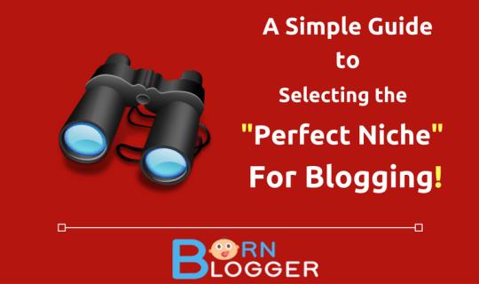 perfect-niche-blogging