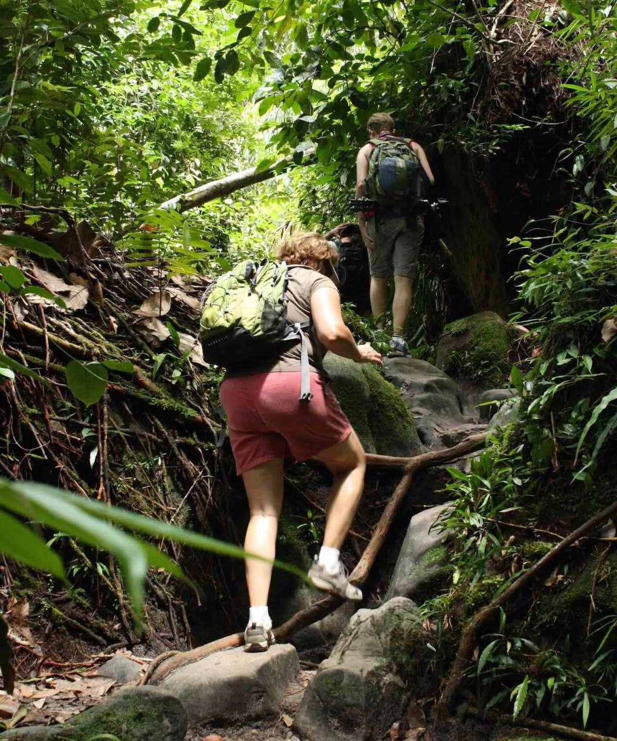 Trekking at Bako National Park