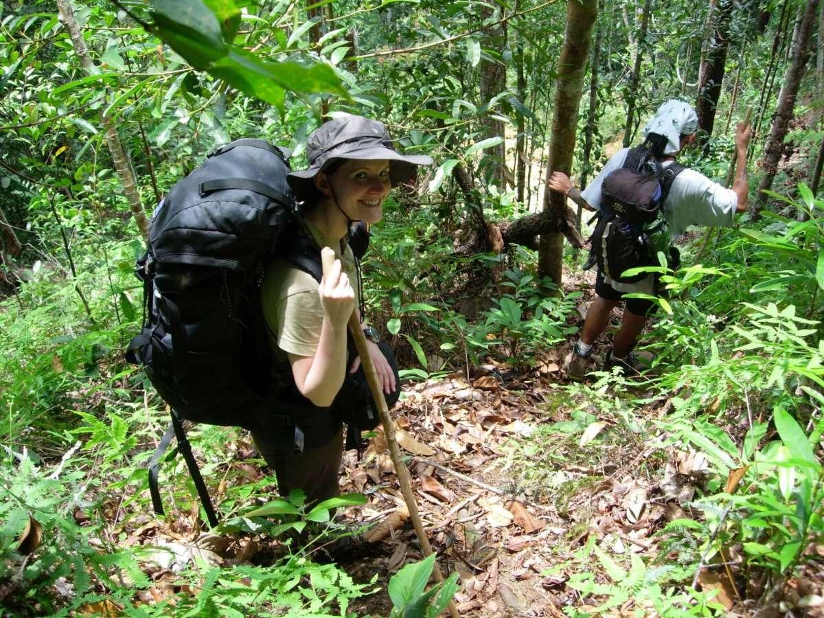 Trekking in search for orangutan along the Red Ape Trail. Ulu Ai, Sarawak, Malaysia.