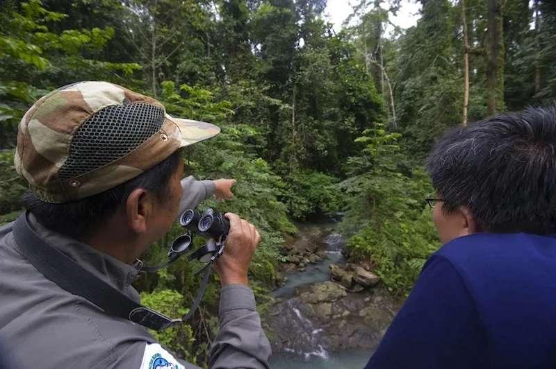 Birdwatching on the Lipad River in Tabin Wildlife Reserve, Sabah, Malaysia