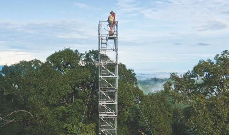 Tourists at the top of a lookout tower take in the stunning views of the rainforest at Ulu Temburong National Park, Brunei