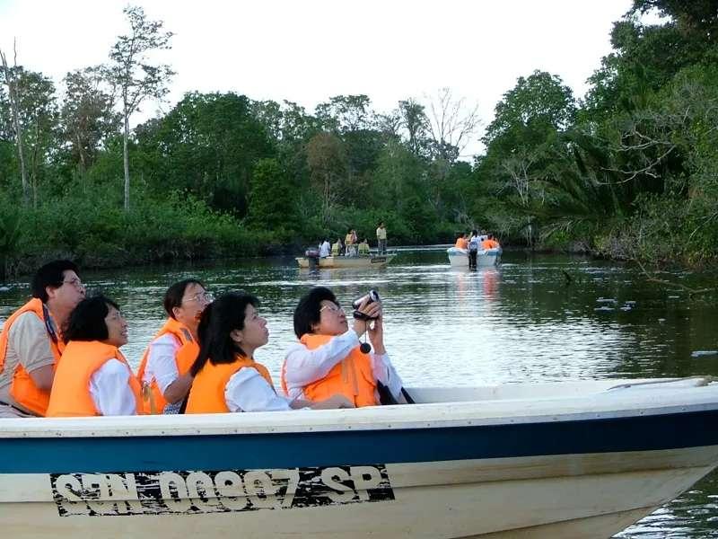 Cruising the Garama / Klias Wetlands in search of proboscis monkeys, Sabah, Malaysia