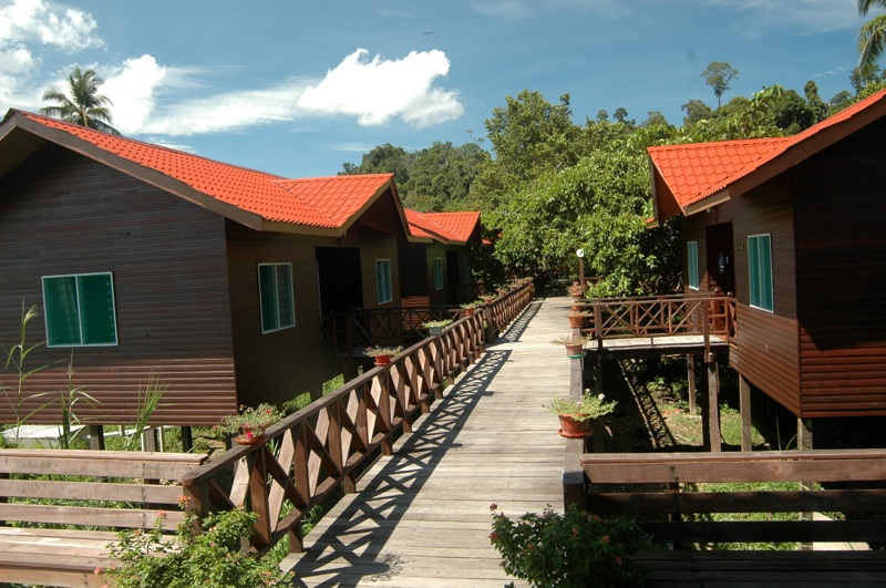 Boardwalk and chalets at Kinabatangan River Lodge, Sabah, Malaysia.