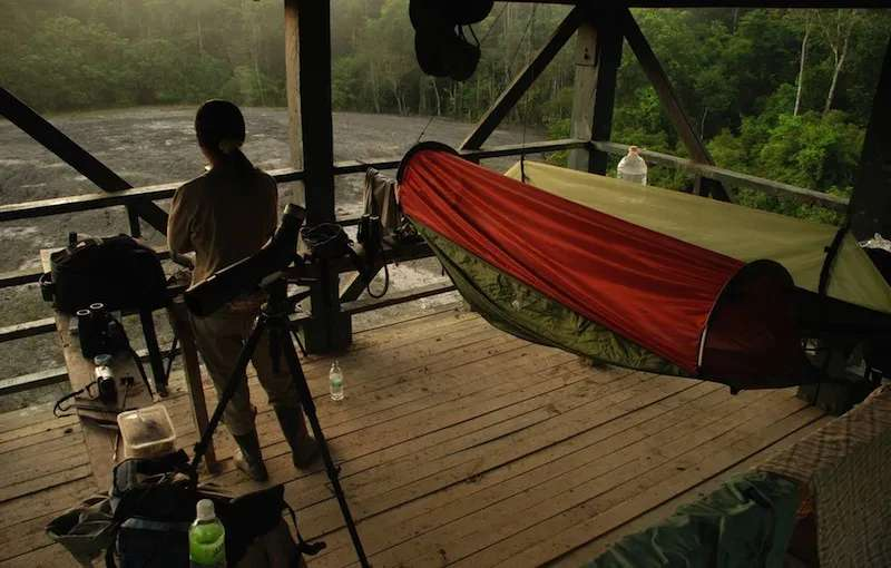 Camping at the Observation Tower at Tabin Wildlife Reserve, Sabah, Malaysia