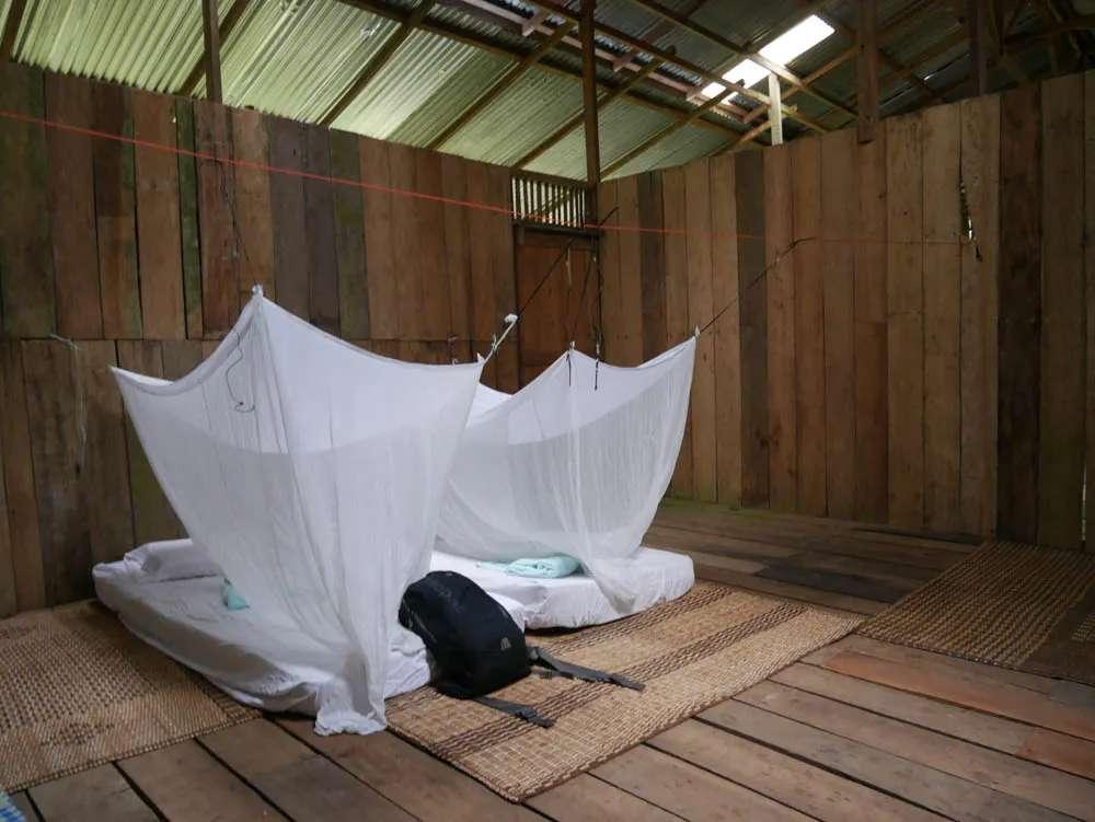 Lubok Kasai jungle camp