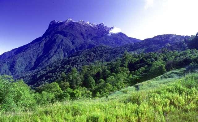 Kinabalu Park Day Trip