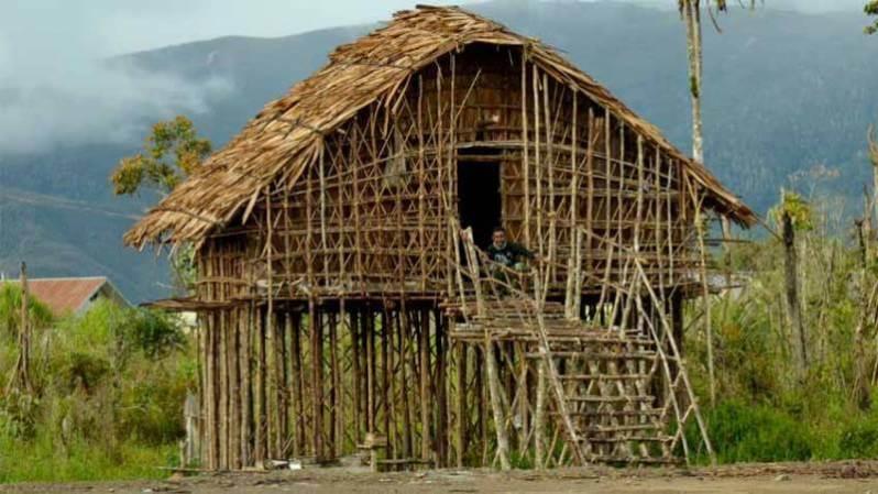Cara Membuat Ruman Adat Papua