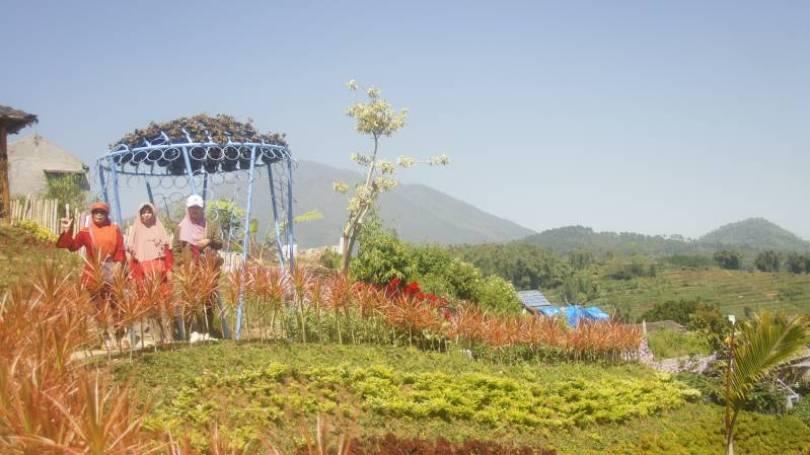 Taman Stroberi Malang