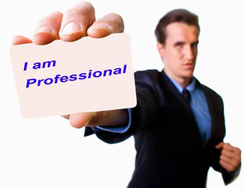 Profesional Dalam Bidang