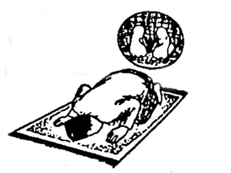 Tata Cara Sholat Tarawih Lengkap dan Mudah Doa Arab Latin ...