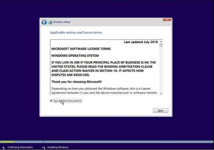 license terms windows 10