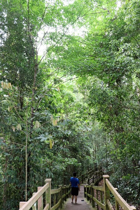 z-location-lumutana-3p7a6649